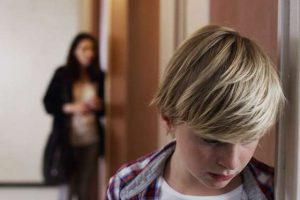 The Boston French Film Festival: Custody