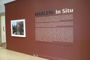 African American Modernism: The Harlem Renaissance and Its Aesthetic Aftermath​