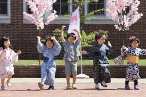 Brookline Cherry Blossom Festival