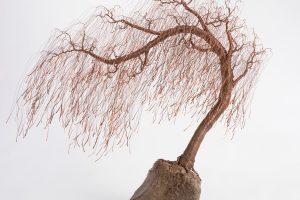 Changing Landscape: Sculpture at the Eustis Estate