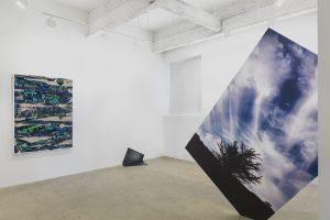MFA in Visual Arts Art Talks: Letha Wilson
