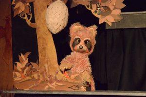 Raccoon Tales