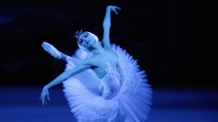 Dance at the Cinema: Swan Lake