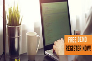 Business anlayst online course free demo from the real time experts