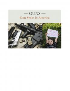 GUNS-Gun Sense in America