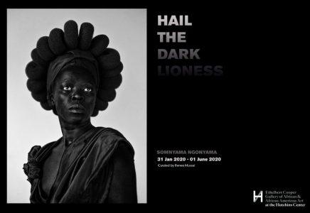 Zanele Muholi: Somnyama Ngonyama, Hail the Dark Li...