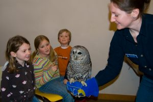 Owl Festival: Up Close and Personal with the Owls of Broadmoor