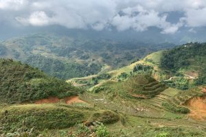 Travel & Taste Vietnam & Cambodia: Natural History, Wildlife, and Culture