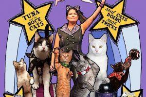 "Rock Cats Rescue Presents… ""The AMAZING ACROCATS"""