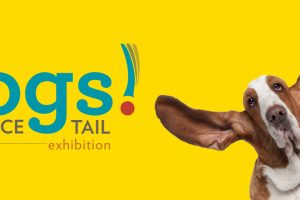 Dogs! A Science Tail at the Museum of Science