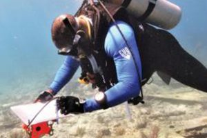 Canceled: Diving with a Purpose: A Fifteen-Year Odyssey
