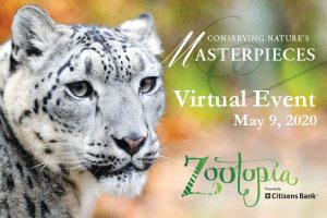 Zootopia 2020 Fundraising Gala is Going Virtual in Support of Zoo New England!