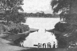Walking Tour of Jamaica Pond