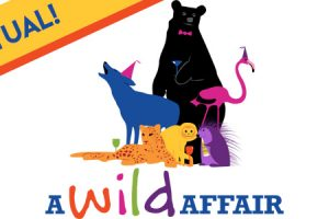 """""""A Wild Affair"""" Fundraising Event is Going Virtual in Support of Stone Zoo!"""