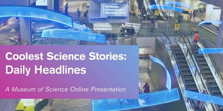 Coolest Science Stories: Daily Headlines