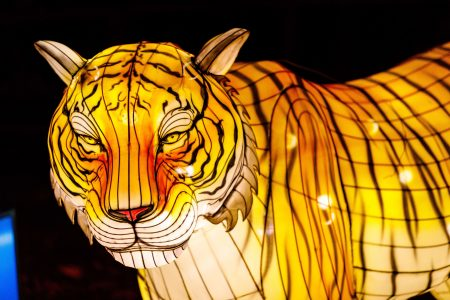 """Franklin Park Zoo to Light Up the Night with """"Boston Lights: A Lantern Experience"""""""
