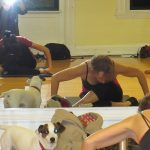 Barre Conditioning Live & Virtual with Lisa Si...