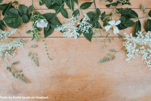 A Jane Austen Garden Party