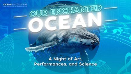 Our Enchanted Ocean