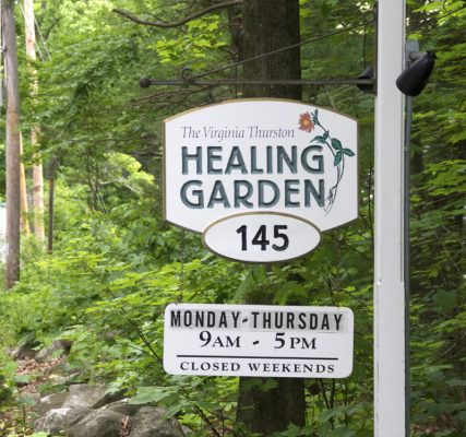The Healing Garden Presents a Virtual Concert with Liz Simmons and Flynn Cohen