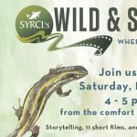 Wild & Scenic Film Fest with Family Art-i-vism