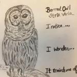 Art and Birding: Snowy Owls