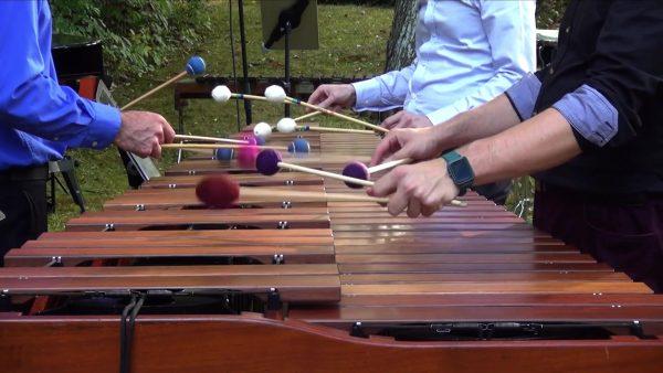 Chameleon Arts Ensemble – Virtual Family Concert...