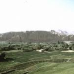 Entangled Histories: The Bamiyan Buddhas—Past, P...