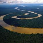 A Far Cry Concert: Amazonia