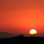 A Far Cry Concert: Sunrise