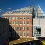 Free Sundays at the Harvard Art Museums