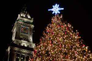 Boston Common Tree Lighting