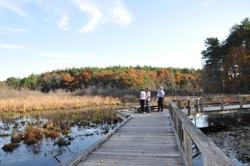 Mass Audubon's Broadmoor Wildlife Sanctuary