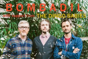 primary-Bombadil---The-Dingo-Babies-1488490727