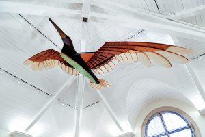 primary-CAM-Kids--STEAM-Bird-Day-1487878609