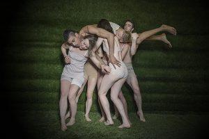 primary-Gallim-Dance-1480624084