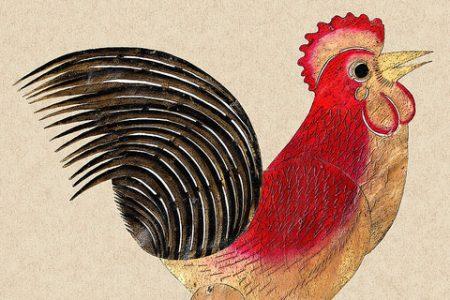 Hao Bang Ah, Rooster!