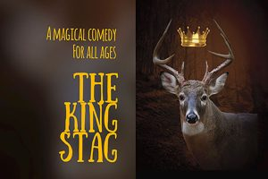 The King Stag